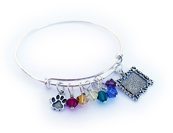 DBL-Rainbow5 Picture Frame Bracelet This Animal Lover Bracelet comes with the 8 charms shown.